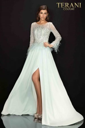 Long sleeve feather accented Mother of Bride gown with airy Chiffon skirt – 2011M2163